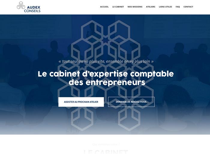 audex-site-page